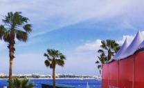 69ème Festival de Cannes – épisode 1: ouverture et film d'ouverture