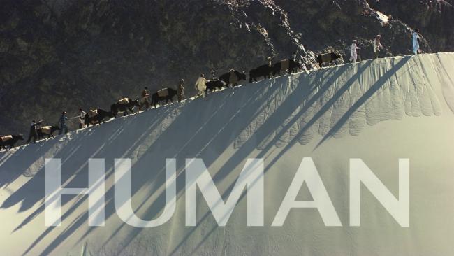 human11